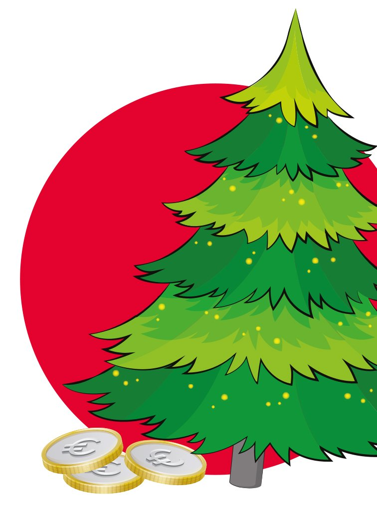 Zakcentje Verdienen In Vlaardingen Met Kerstbomen Irado