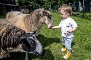 Kinderboerderij 't Hoefblad