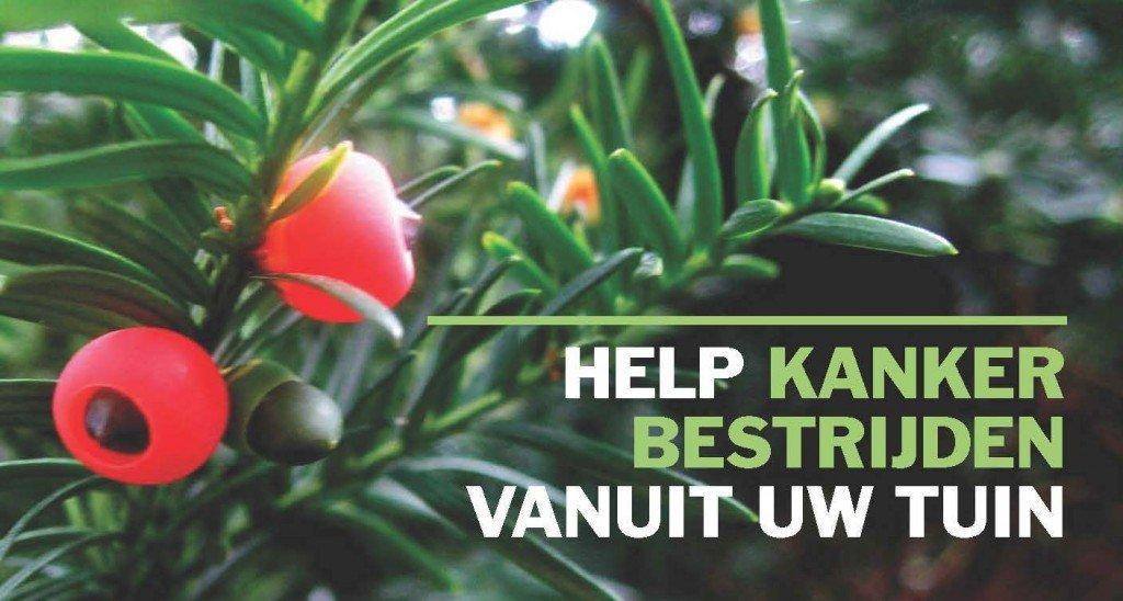 help kanker bestrijden vanuit uw tuin