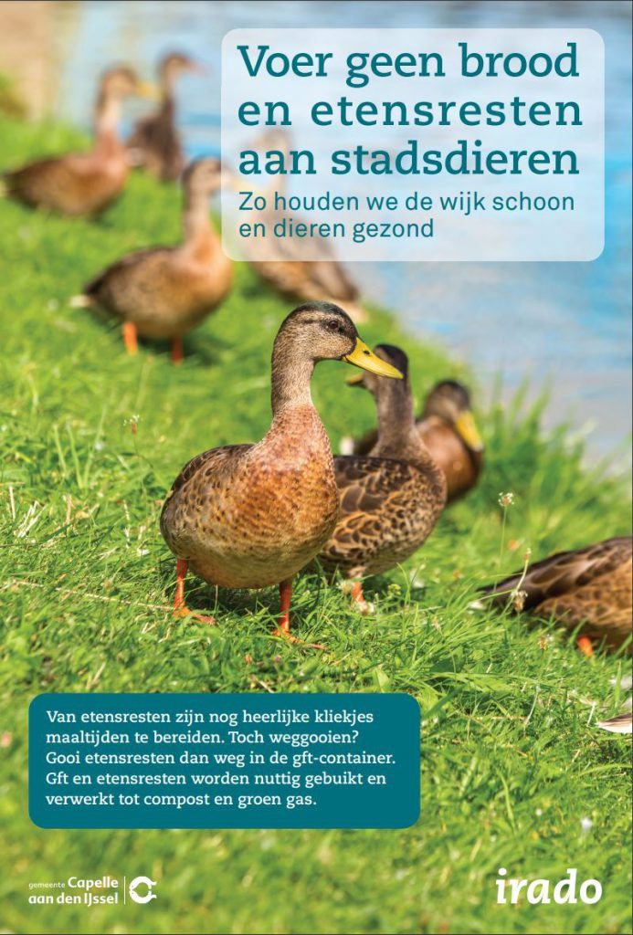 stadsdieren-Capelle-poster-advertentie-2021